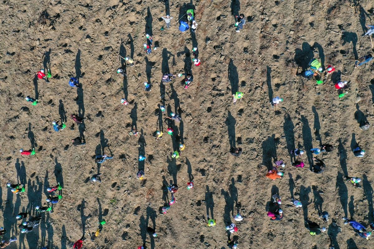İzmir depreminde ölen ikizler anısına 1500 fidan toprakla buluştu